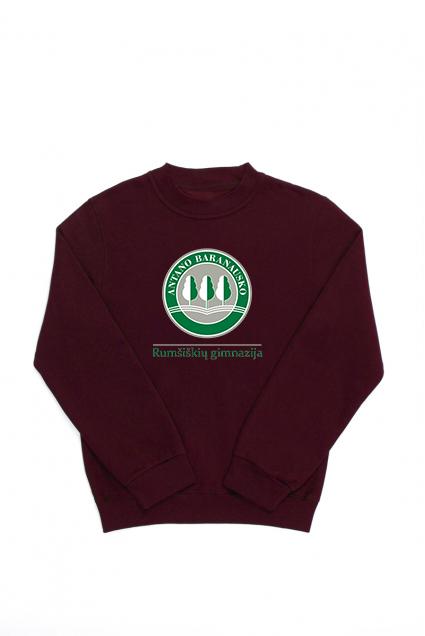 Rumšiškių Antano Baranausko gimnazijos džemperis