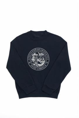 """Vytauto Didžiojo universiteto """"Rasos"""" gimnazijos džemperis"""